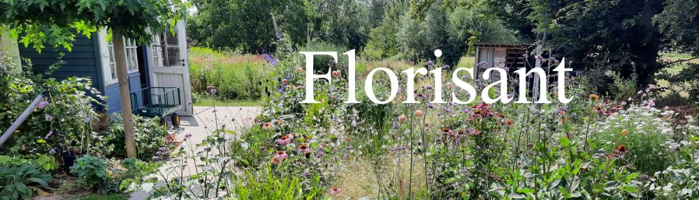 Florisant
